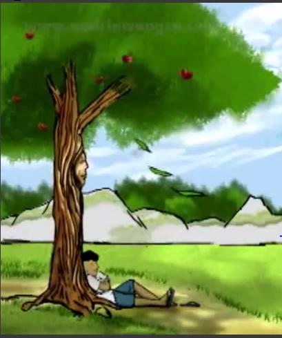 Hasil gambar untuk kisah pohon apeldan anakmuda